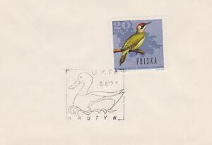 Poland postmark UKTA - KRUTYN duck - <span itemprop=availableAtOrFrom>Bystra Slaska, Polska</span> - Poland postmark UKTA - KRUTYN duck - Bystra Slaska, Polska