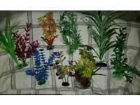 Fish tank ornaments, plants.