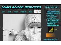 All Boiler Repairs, Vaillant, Worcester Bosch, Baxi, etc, valves, pumps, controls,etc