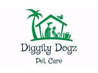 Diggity Dogz dog walking / pet visits in Nottingham