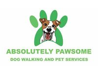 ABSOLUTELY PAWSOME Dog Walking and Pet Services (Dog Walker)