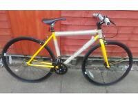 New feral single speed fixey bike