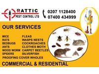 24/7 Guaranteed 100% Cheap Pest Control Mice Rat Cockroach Bedbug Ants Wasps Fleas Exterminator