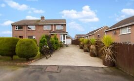 House for rent portadown 11 the glebe seagoe