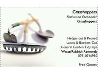 Grasshopper Lawn Service