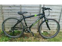 Carrera Subway Ltd Mountain Bike.