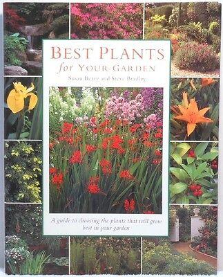 BEST PLANTS FOR YOUR GARDEN Berry Flowers Shrubs Foliage Gardening