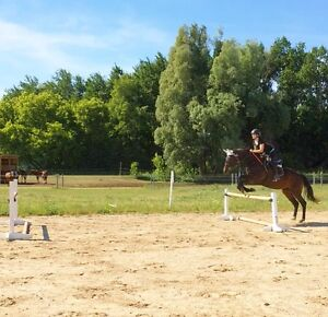 Riding Instructor Wanted