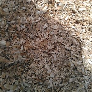 Wood Shavings *Updated*