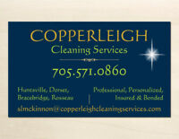 Professional Cleaner for home, cottage, office