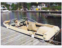 Thundercraft I /O  17' bowrider (like new)