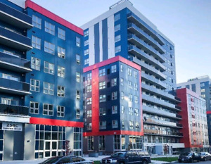 1 Bedroom Luxury Suite at The HUB (Sublet) | Apartments & Condos for