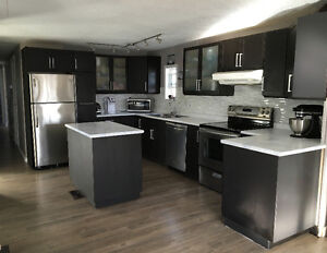 Completely Renovated Mobile Home For Sale *NEW VIDEO WALKTHROUGH