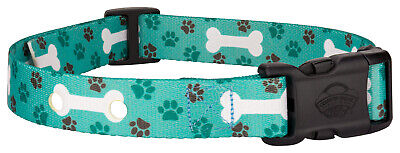 Country Brook Design® Oh My Dog Replacement Collar For Dog