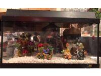 60 litre Aquarium/Fish tank - includes accessories, heater, etc