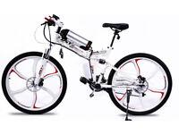 Brand New Electric Bike Go Go JEDI
