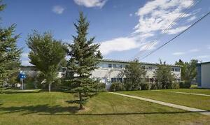 FREE RENT | Beautiful 4 Bedroom Townhome | Wellington Park Edmonton Edmonton Area image 10
