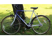 raleigh pioneer classic. 24 inch frame