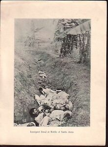 Insurgent-Dead-Battle-Santa-Ana-Philippines-1900-photo