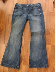 American Eagle Vintage Flare Stretch Jeans Sz 12