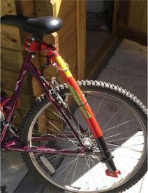 Trail Gator Bike Tow Bar Child