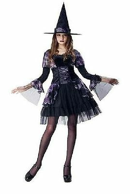 NEW Womens Purple Gothic Witch Dress Hat Adult Halloween Costume Size MED (8-10) (Womens Gothic Halloween Costumes)