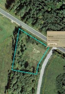Looking For Woodlots!??!  Call Me!!