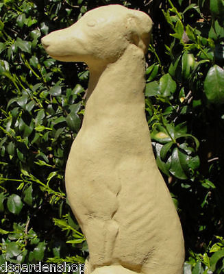 Chic GREYHOUND STATUE Cement Stone Garden Whippet Dog (OV)