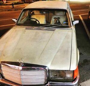 1973 Mercedes-Benz 450 Sedan