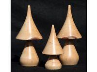 Pointed Mushrooms