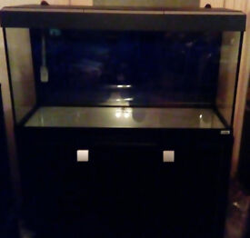 Fluval Roma 200L - excellent condition