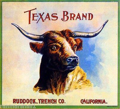 Los Angeles Texas Longhorn Steer Orange Citrus Fruit Crate Label Art Print