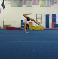 Private Gymnastics/Tumbling Lessons Available
