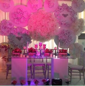 AFFORDABLE EXOTIC DECOR FOR WEDDINGS & ALL OCCASIONS!!  Kitchener / Waterloo Kitchener Area image 10