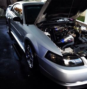FORD MUSTANG GT SUPERCHARGED SHOWROOM