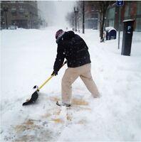 Looking for a Snow Shoveler ?