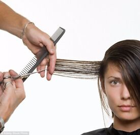 Wanted HAIRDRESSER, BARBER or HAIR STYLIST