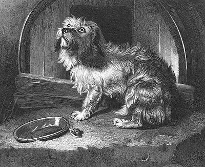 HUNGRY SAD SCOTTISH TERRIER DOG by Empty Bowl, 1878 LANDSEER Art Print Engraving