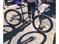 Bike stolen 10/07/17