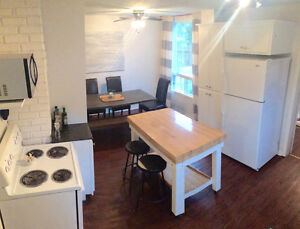 Brighton/Downtown tourist home available For April
