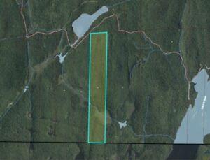 Boileau en Outaouais terre à bois idéale pour la chasse, rivière