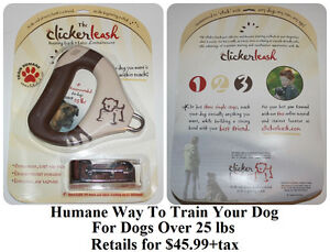 The Clicker Leash   * Delivery Available *