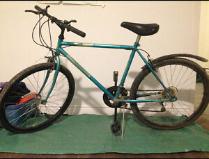 simple and sweet bike