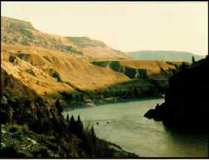 Gold Claim in the Cariboo Chilcotin