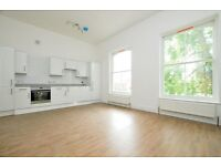 *Stunning* 1 bedroom Apartment in Clapton.. Available NOW