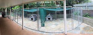 Dog Enclosure Joyner Pine Rivers Area Preview