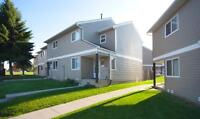 Spacious Suites, Private Fenced Yards, and Full Basements