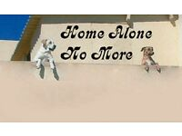 Home Alone Dog Day Care & Walking