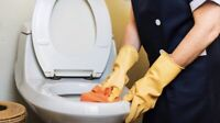 Capital City Cleaners ($15 off your first cleaning)