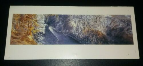 EVE INGALLS Wilderness Paintings SOHO20 art exhibition catalogue booklet 1995